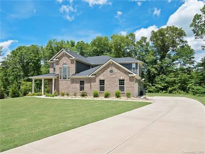 Mooresville Single Family Home For Sale: 356 S San Agustin Drive