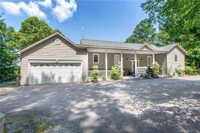 Asheville NC Single Family Home For Sale: $750,000