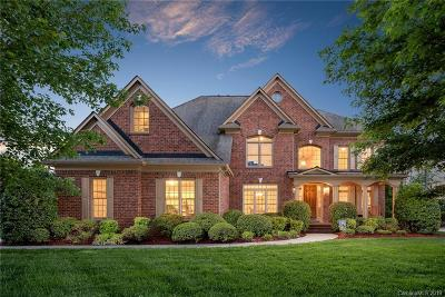 Waxhaw Single Family Home Under Contract-Show: 7317 Stonehaven Drive