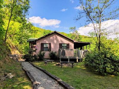 Hot Springs NC Single Family Home For Sale: $138,000