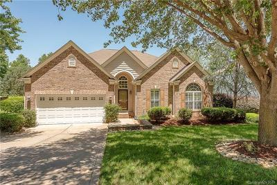 Huntersville Single Family Home For Sale: 12415 Kane Alexander Drive