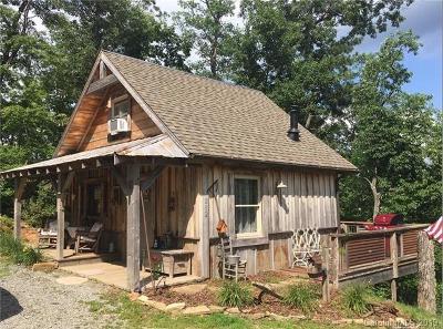Transylvania County Single Family Home For Sale: 262 Brucene Drive