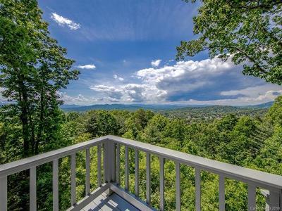 Asheville Single Family Home For Sale: 188 Cherokee Road
