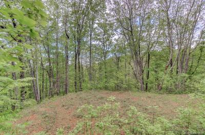 Hot Springs NC Residential Lots & Land For Sale: $60,000