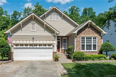 Indian Land Single Family Home For Sale: 3136 Streamhaven Drive