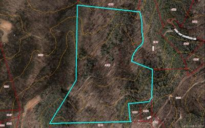 Buncombe County, Haywood County, Henderson County, Madison County Residential Lots & Land For Sale: 99999 High Top Mountain Road