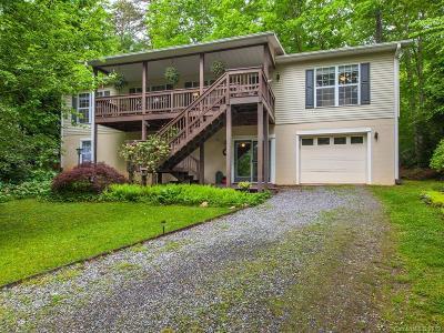 Black Mountain Single Family Home For Sale: 16 Daniel Lane