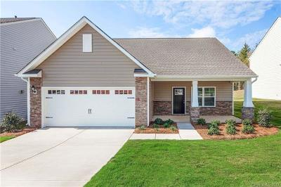 Fort Mill Single Family Home For Sale: 672 Cape Fear Street