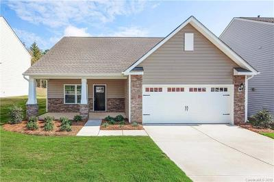Fort Mill Single Family Home Under Contract-Show: 679 Cape Fear Street