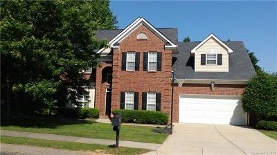 Charlotte Single Family Home For Sale: 12543 Cedar Post Lane