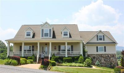 Waynesville Single Family Home For Sale: 356 Everview Lane