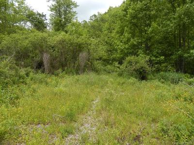 Hot Springs NC Residential Lots & Land For Sale: $650,000
