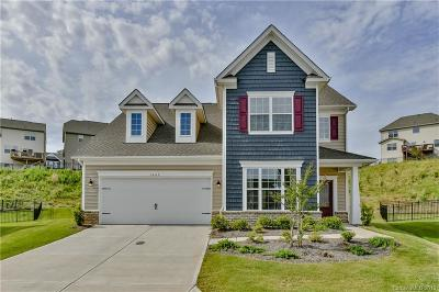 Fort Mill Single Family Home Under Contract-Show: 1663 Sassafras Court