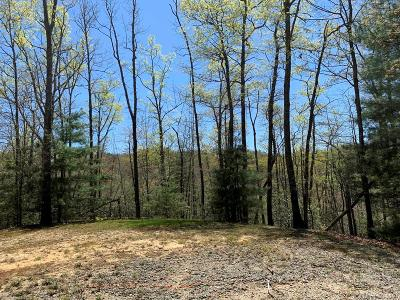 Brevard Residential Lots & Land For Sale: 999 Cantrell Mountain Road #14/15