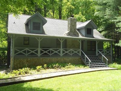 Haywood County Single Family Home For Sale: 38 McGregor Lane