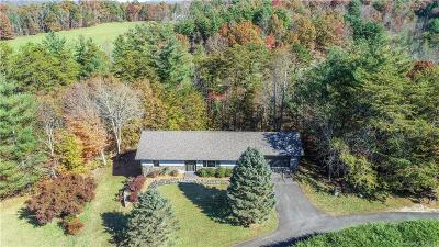 Madison County Single Family Home For Sale: 413 Mountain Haven Drive