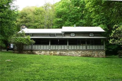 Mars Hill Single Family Home For Sale: 292 Village Lane