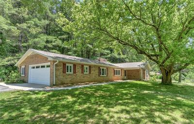 Asheville Single Family Home For Auction: 445 A Chunns Cove Road