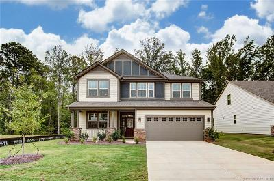 Clover, Lake Wylie Single Family Home For Sale: 4946 Norman Park Place #57 Quint