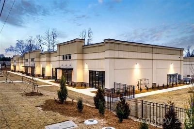 Huntersville Commercial For Sale: 380 Seagle Drive