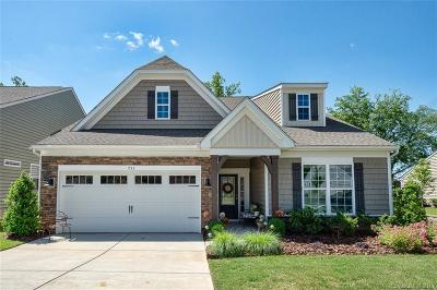 Fort Mill Single Family Home Under Contract-Show: 733 Bearcamp Way