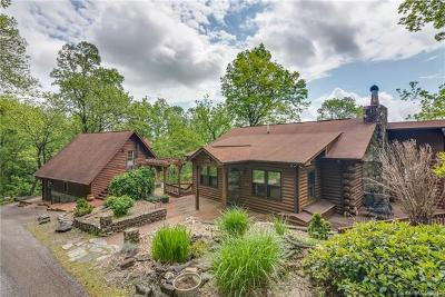 Bat Cave, Black Mountain, Chimney Rock, Lake Lure, Mill Spring, Rutherfordton, Union Mills, Bostic, Columbus, Tryon, Saluda Single Family Home For Sale: 295 Mountainside Drive