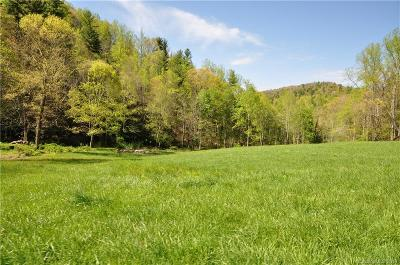 Marshall NC Residential Lots & Land For Sale: $799,000