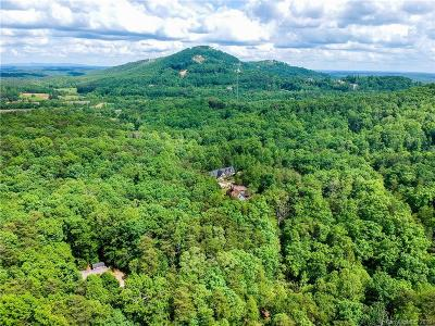 Bat Cave, Black Mountain, Chimney Rock, Columbus, Gerton, Lake Lure, Mill Spring, Rutherfordton, Saluda, Tryon, Union Mills Residential Lots & Land For Sale: Raleigh Drive #5