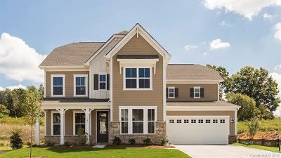 Fort Mill Single Family Home For Sale: 2000 Sapphire Meadow Drive #756