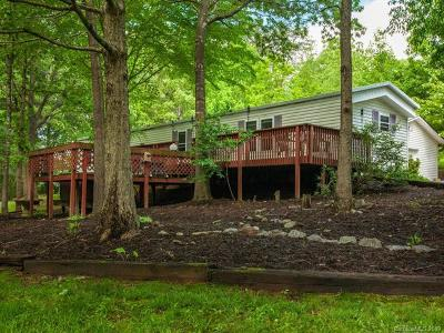 Weaverville Single Family Home For Sale: 234 Herron Cove Road