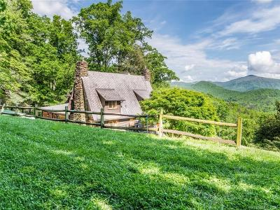 Single Family Home For Sale: 92 Flat Top Mountain Road
