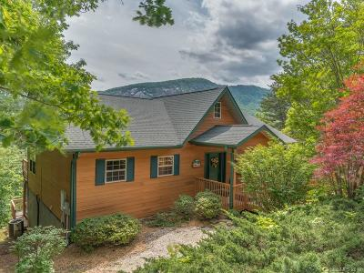 Lake Lure Single Family Home For Sale: 189 Cameron Lane
