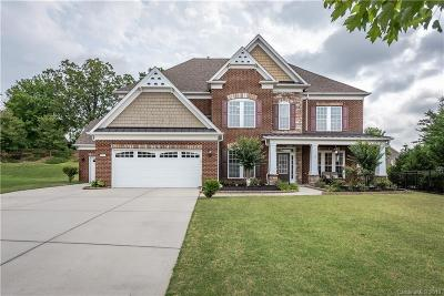 Waxhaw Single Family Home For Sale: 9903 Silverling Drive