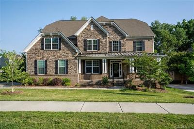 Davidson Single Family Home Under Contract-Show: 10101 Alabaster Drive #49