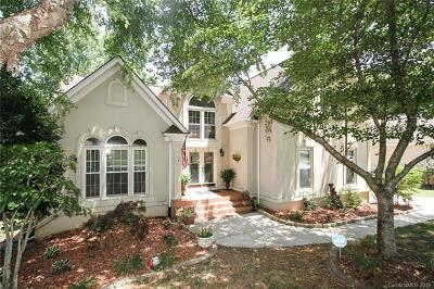 Fort Mill Single Family Home For Sale: 764 Portpatrick Place