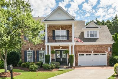 Fort Mill Single Family Home For Sale: 415 Nugget Court
