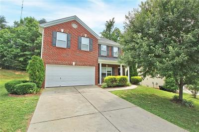 Mooresville Single Family Home For Sale: 236 Flanders Drive