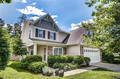 Charlotte Single Family Home For Sale: 9808 Dominion Crest Drive