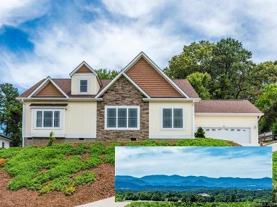 Asheville Single Family Home For Sale: 72 Climbing Aster Way