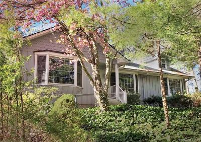 Buncombe County Single Family Home For Sale: 82 White Thorn Drive