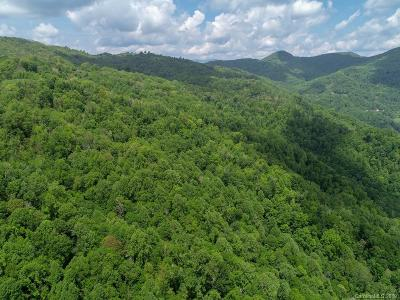 Buncombe County, Haywood County, Henderson County, Madison County Residential Lots & Land For Sale: Short Ridge Lane