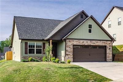 Weaverville Single Family Home For Sale: 231 Water Leaf Drive