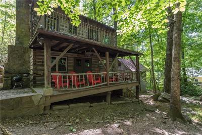 Montreat Single Family Home For Sale: 376 W Virginia Terrace