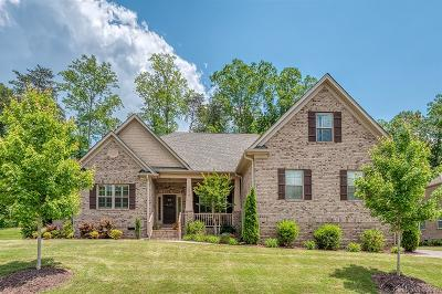 Charlotte Single Family Home For Sale: 16518 Crosshaven Drive