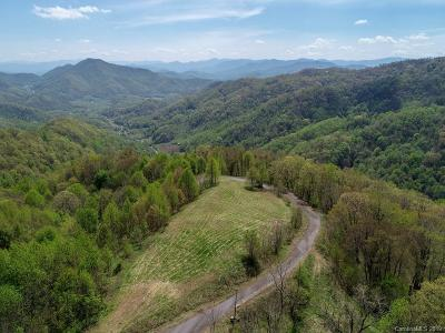 Buncombe County, Haywood County, Henderson County, Madison County Residential Lots & Land For Sale: Wesley Creek Road