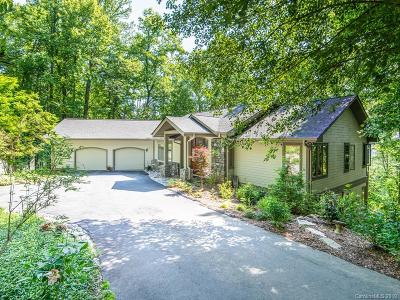 Mills River Single Family Home For Sale: 1015 High Vista Drive