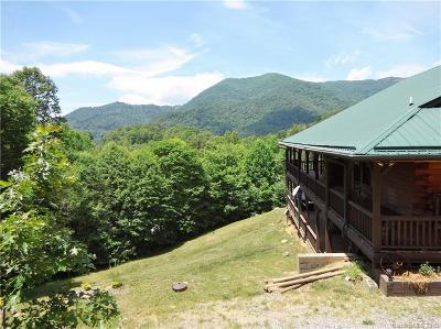 Haywood County Single Family Home For Sale: 264 Moonbeam Lane