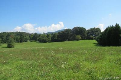 Buncombe County, Haywood County, Henderson County, Madison County Residential Lots & Land For Sale: 165 Knight Drive