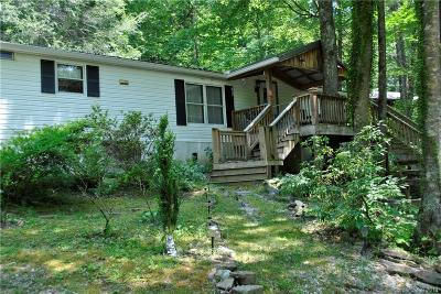 Black Mountain Single Family Home For Sale: 22 Resting Ridge