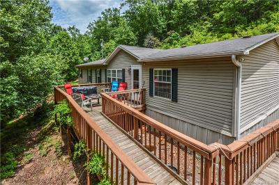 Candler Single Family Home For Sale: 19 Gitter Done Lane